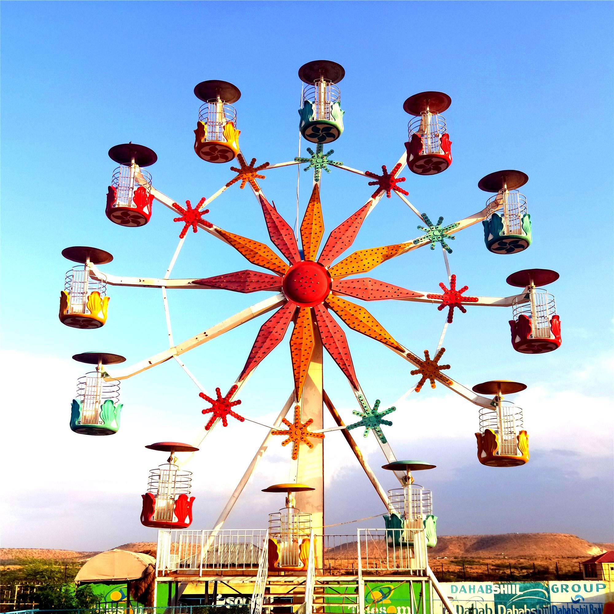 20m high Flower Basket Theme Rark Rides Ferris Wheel
