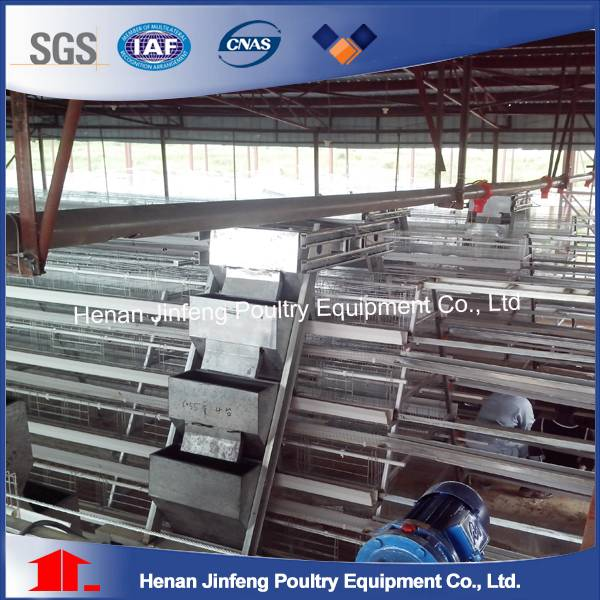 Automatic Best Sale Battery Cage For Layers