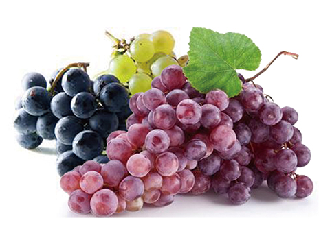 Turnkey Industrial Grape Beverage Processing Line