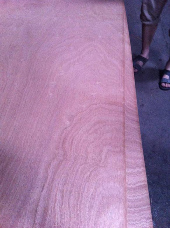 sapele plywood