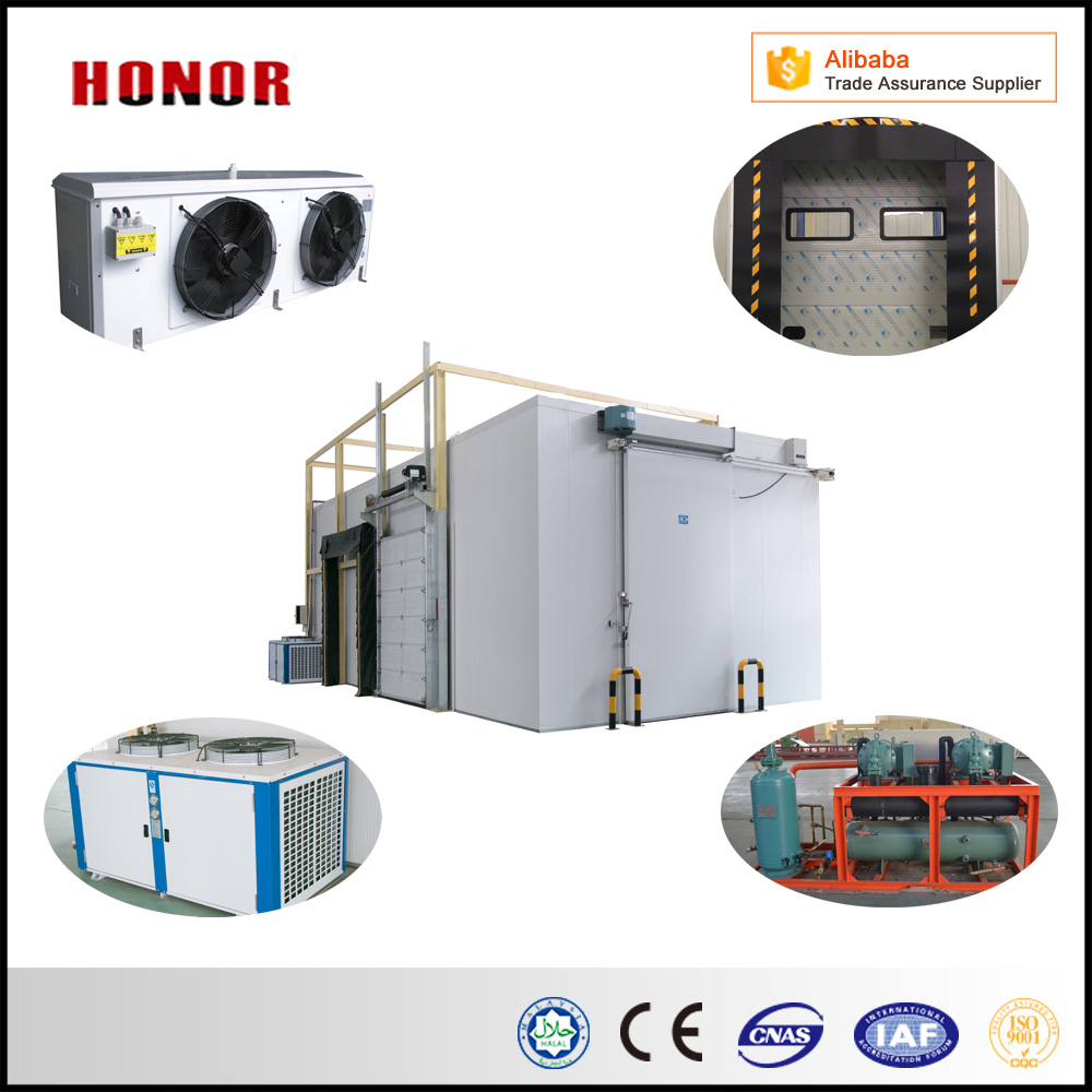 Customized Cold Storage For Meat And Fish Fresh in china