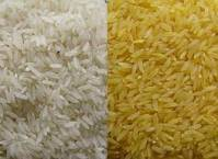 WHITE AND PARBOILED RRICE
