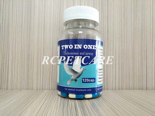 Chinese Herbal Capsule for Racing Pigeon