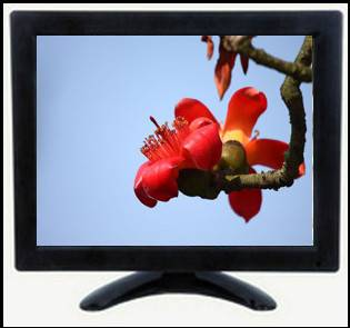 9.7 Inch High-Definition Monitor, 1080P Monitor, Display IPS Monitor