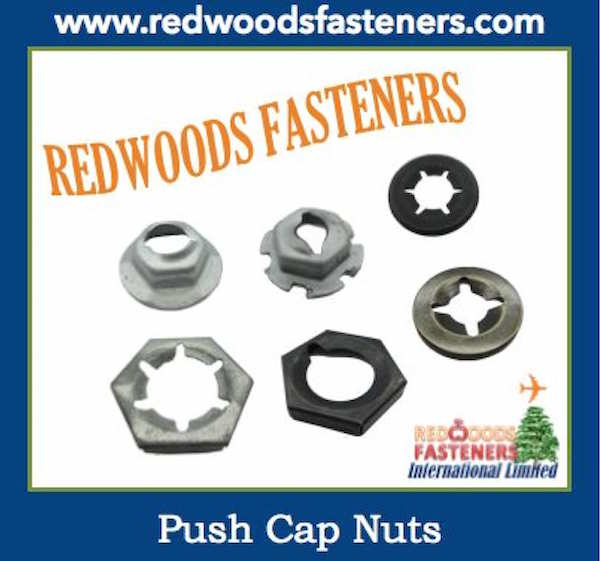 push cap nut DIN7967