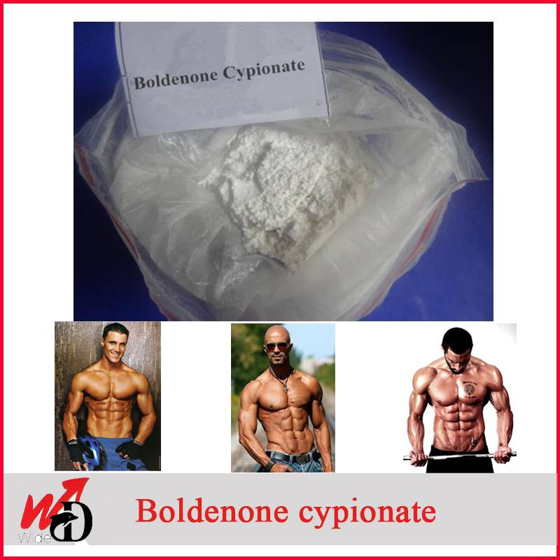 Anabolic Androgenic Steroid Powder Boldenone Cypionate CAS: 106505-90-2