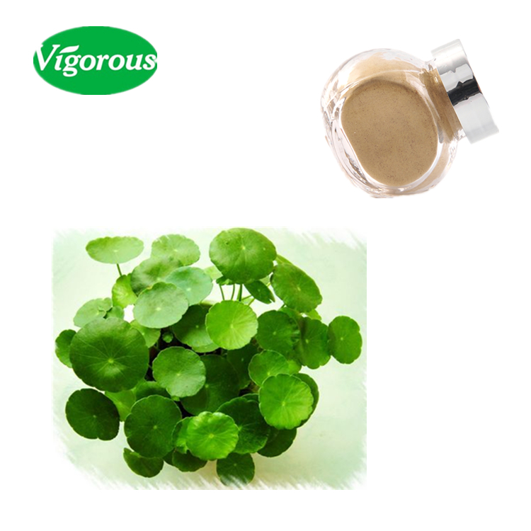High quality centella asiatica extract