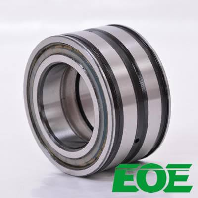 EOE High Speed Parts SL04170PPX/NNF170-2LSNVY Double Sealed Double Row Full Complement Cylindrical R