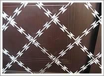 Straight Line Razor Wire Fence