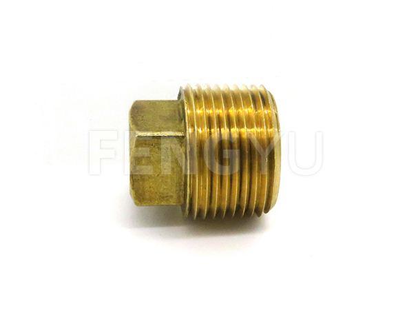 Brass male thread plug F280X