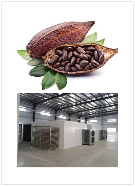 Less electricity consume cocoa dehydrator,cocoa nut drying machine, save more 70% electricity energy