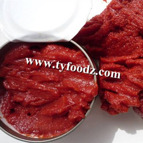 Hot sell canned tomato paste,tomato sauce of brix 28-30% and 22-24% from 70g~4.5kg