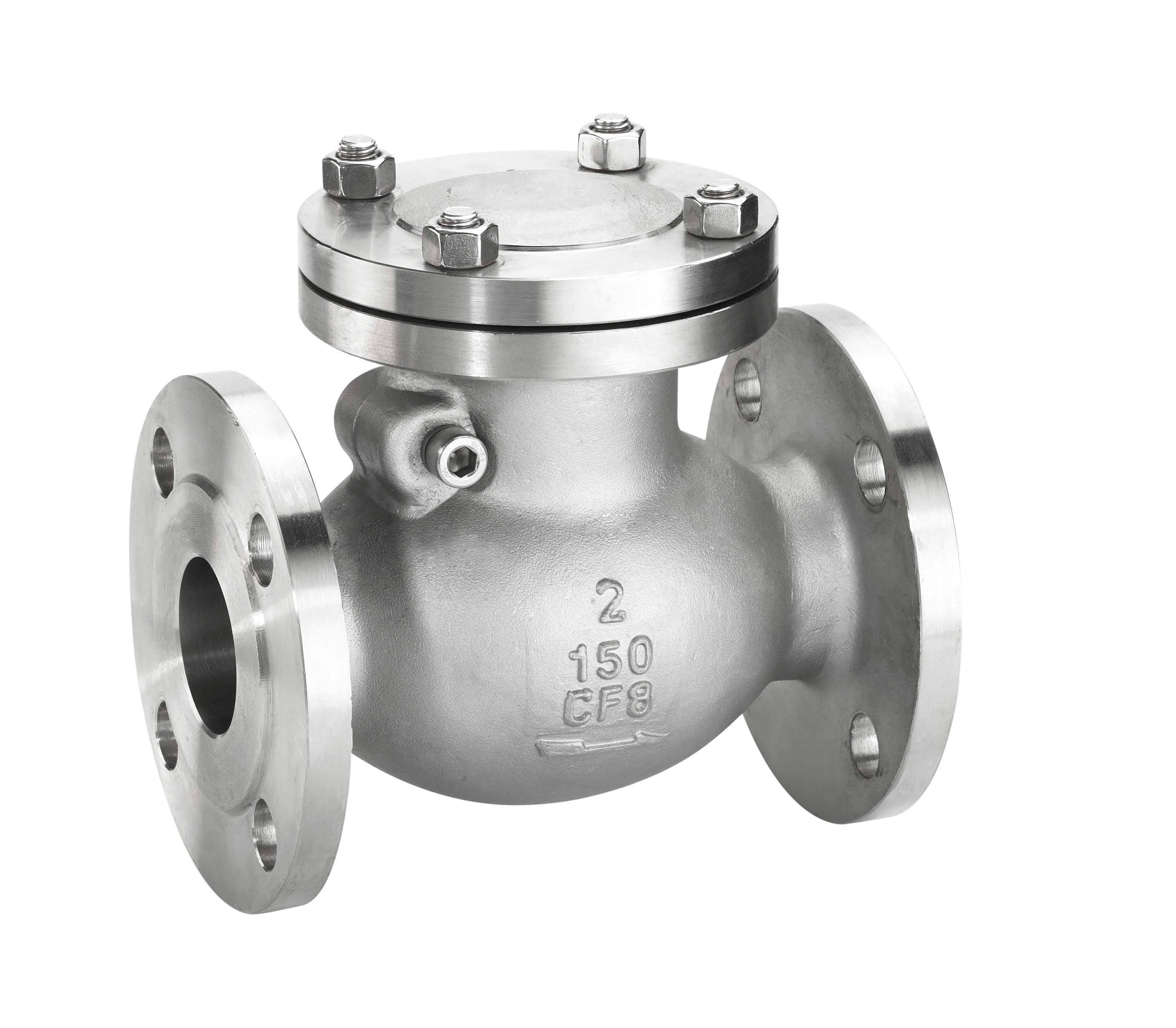 The swing flange of type check valve