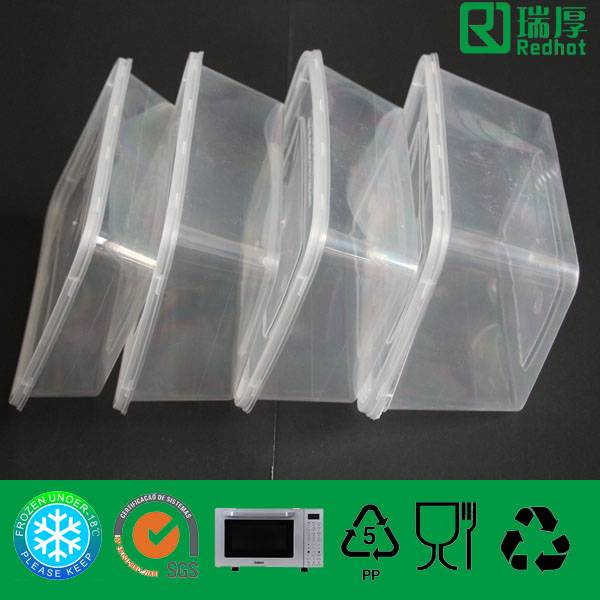 Rectangular Food Container for Storage