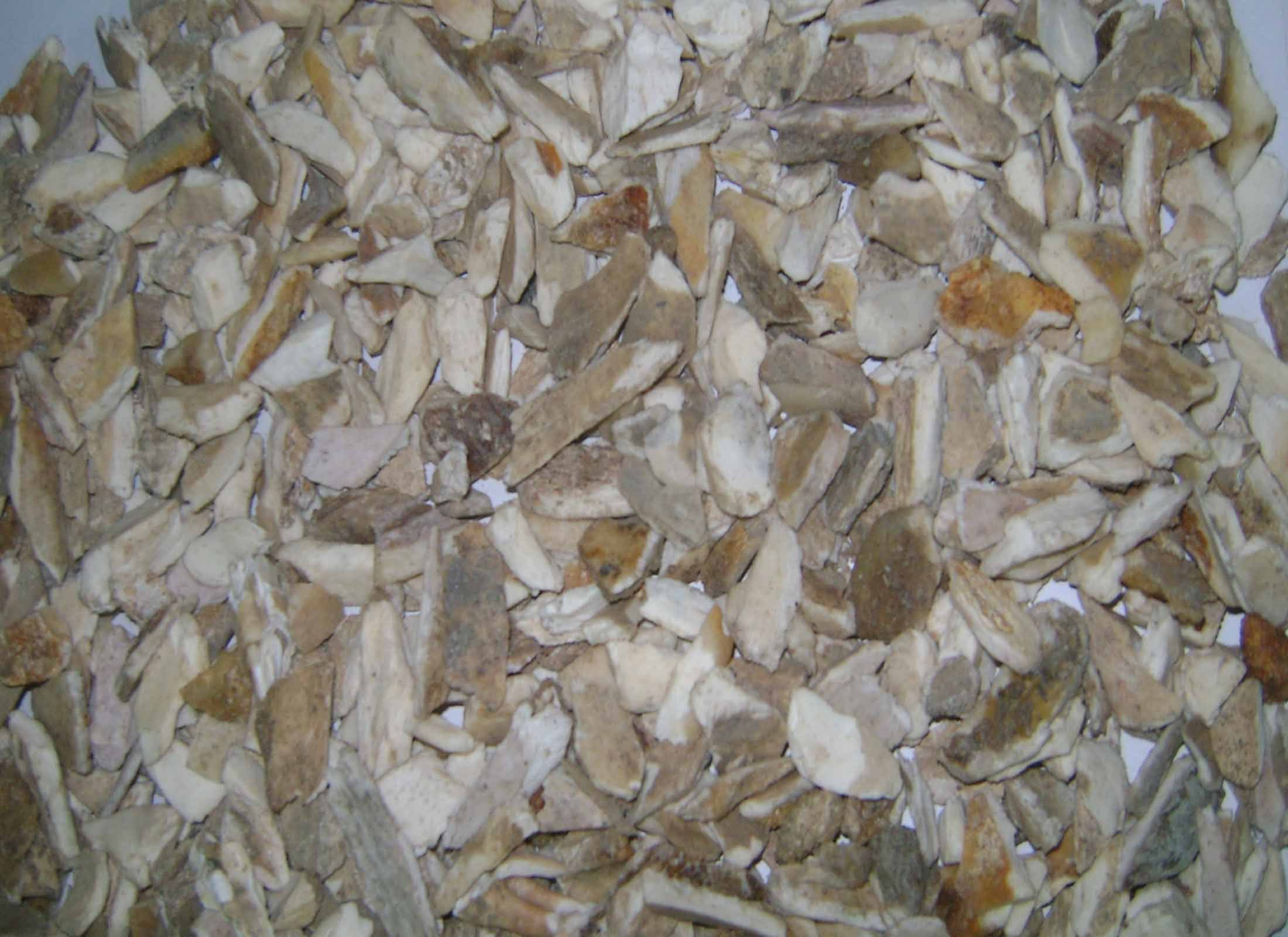 Supply of Crushed Bone from Dhaka, Bangladesh (For Gelatin Manufacturing factory)