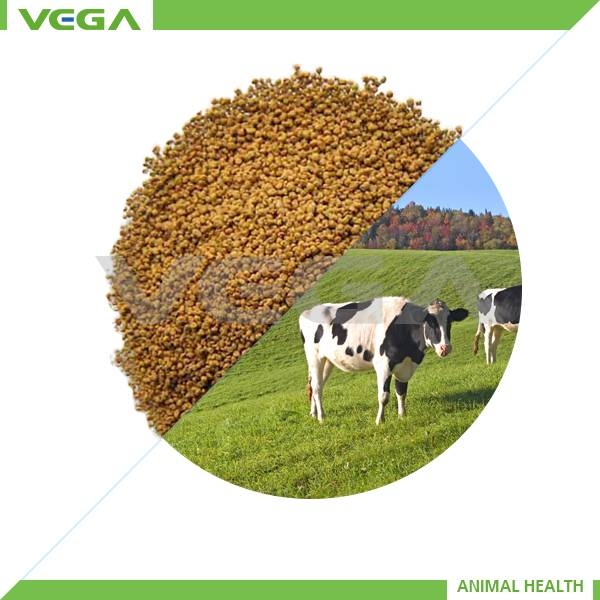 Feed Additives Rumen-Protected Lysine 20% Microcapsule, Rumen Protect Lysine-Rumen Protect Lysine Ma