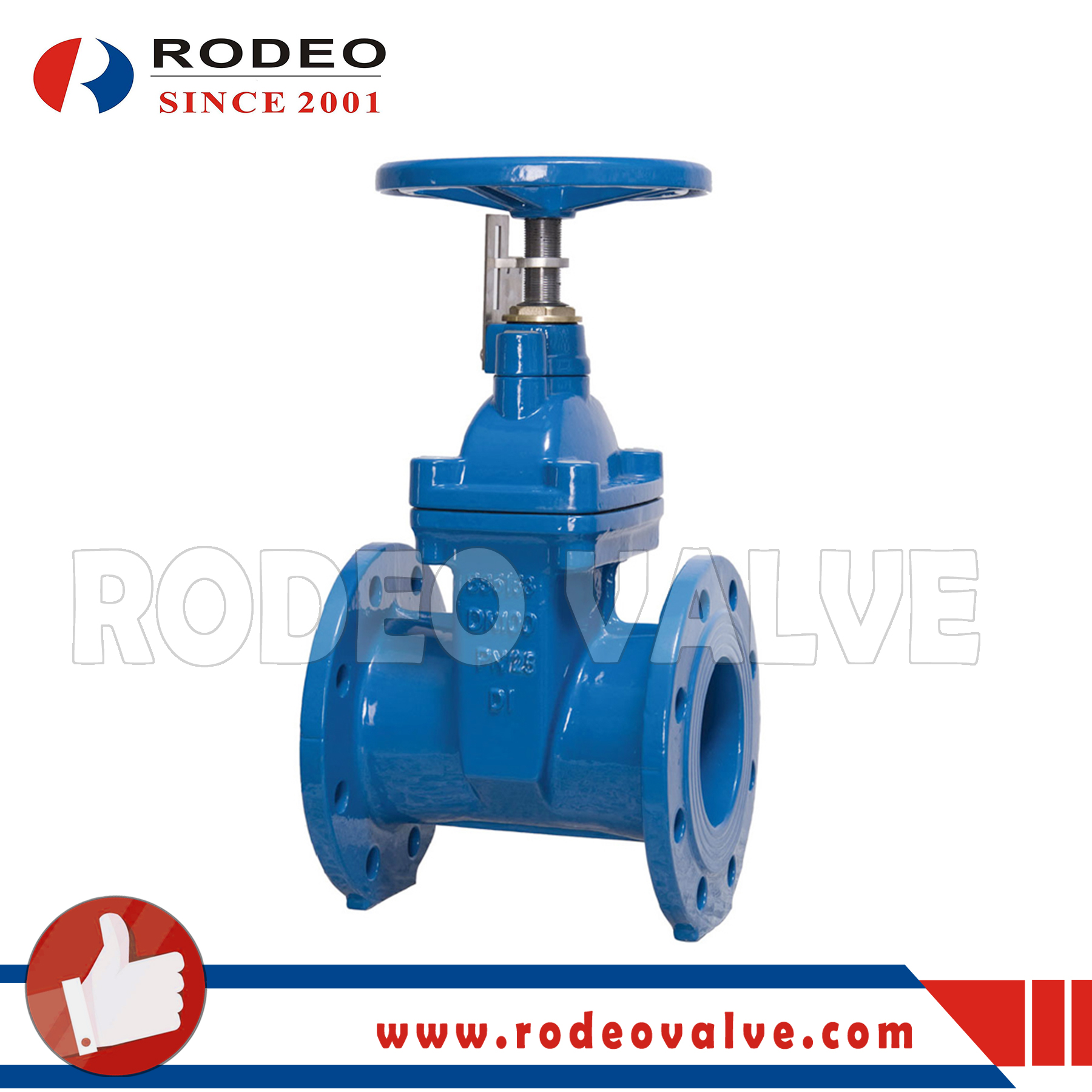 Ductile iron flanged gate valve