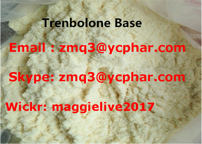 Trenbolone base Muscle Building Steroids 10161-33-8 Powerful Anabolic Steroid powder