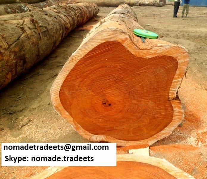 Tropical  Timber, Logs