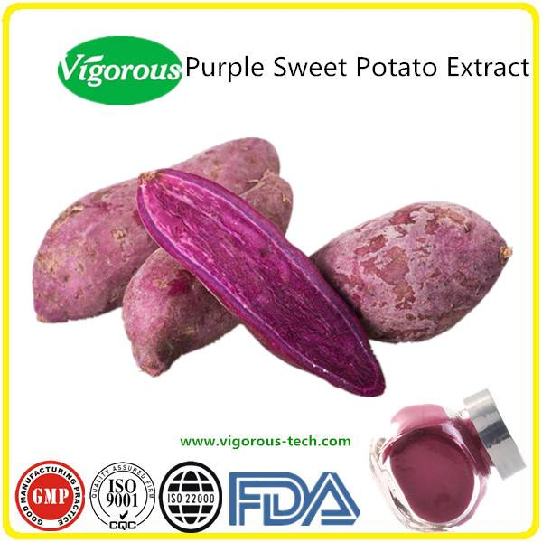 GMP manufacturer pure natural anthocyanidins purple sweet potato extract