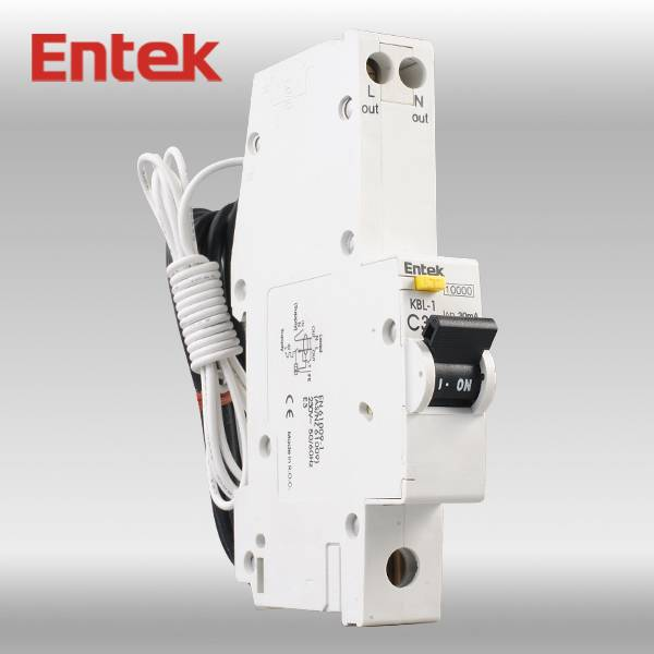 Residual Circuit Breaker with Overcorrect protection (RCBO) 1P+N CE 10A