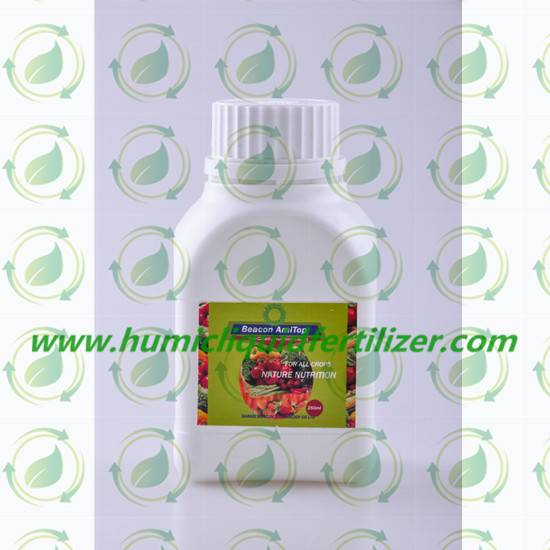 Amitop Natural Liquid Plant Stimulant