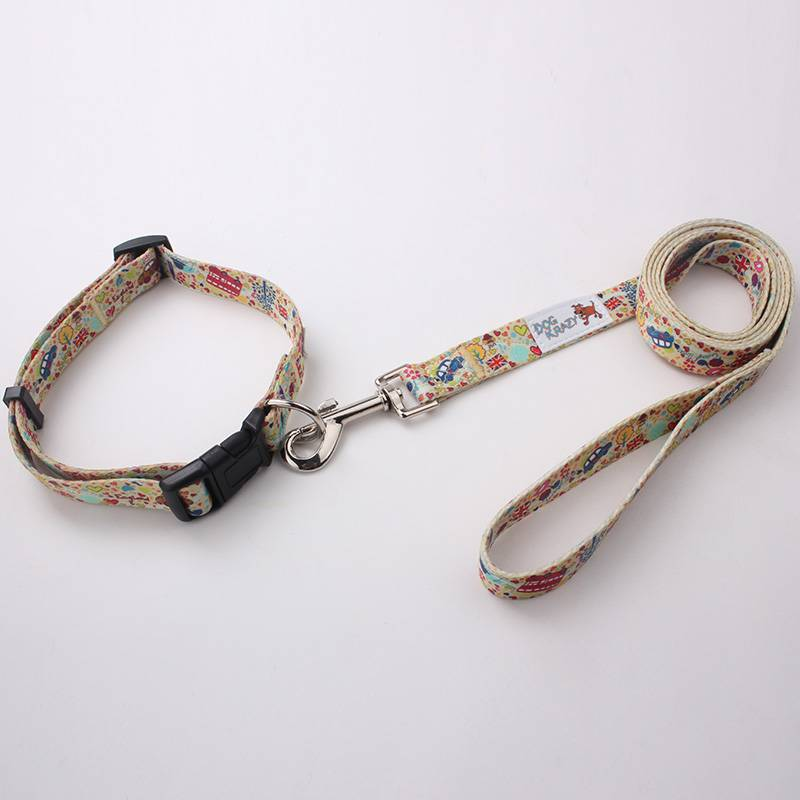 China Professional Manufacturer Wholesale Polyester Dog Collar Leash