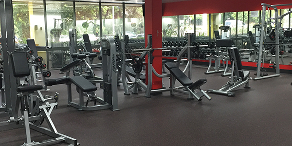 fitness machine gym equipment with superior quality
