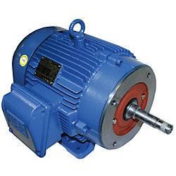 WEG Motor WEG AC Motor