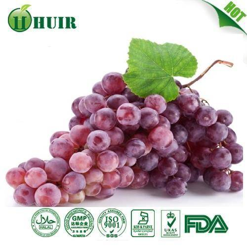 Grape Seed Extract 62%