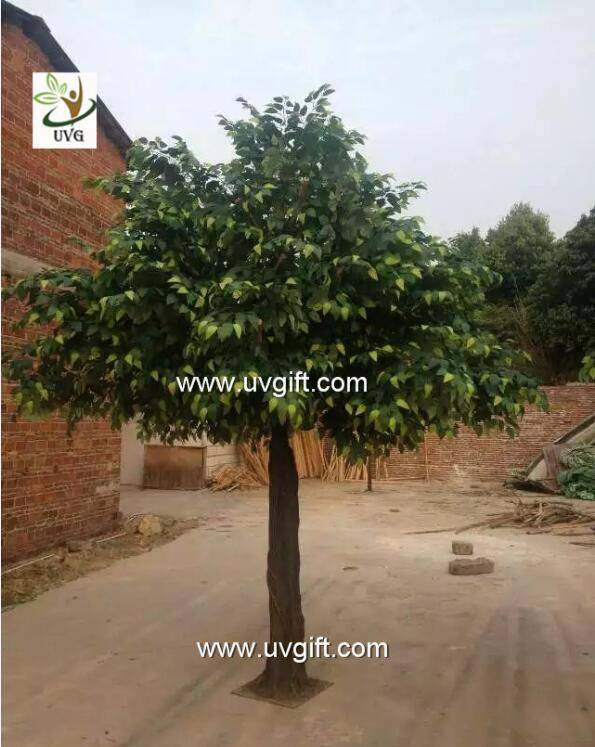 UVG GRE045 ornamental green banyan tree artificial outdoor trees for office decoration