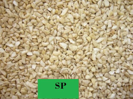 Cashew Nut SP