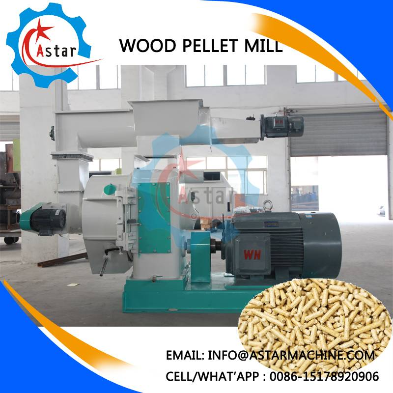 Output 1t/H Ce Approved Wood Pellet Mill With Automatic Lubrication Machine
