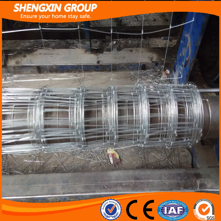 Hot-Dipped Galvanized Cow Wire Mesh Cattle Mesh Fence