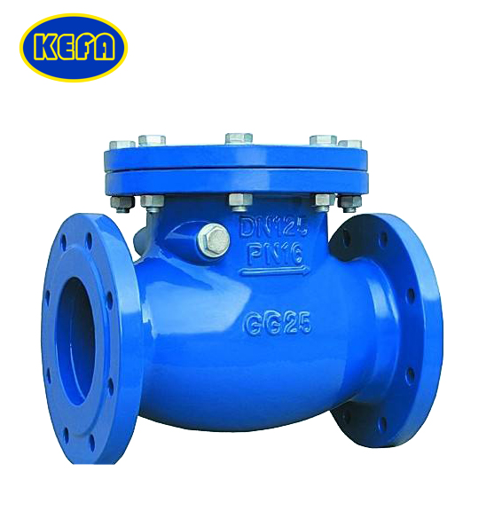 Double Flange Swing Check Valve