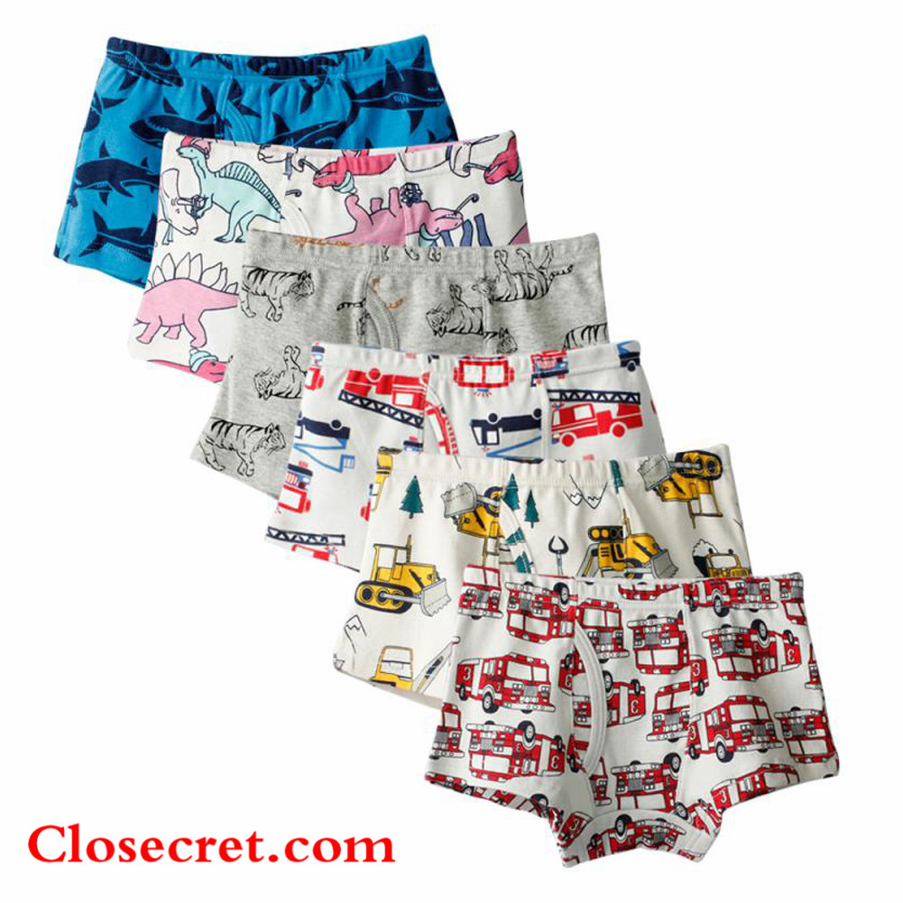 Closecret Kids Series Soft Cotton Toddler Underwear Little Boys' Assorted Boxer Briefs(Pack of 6)