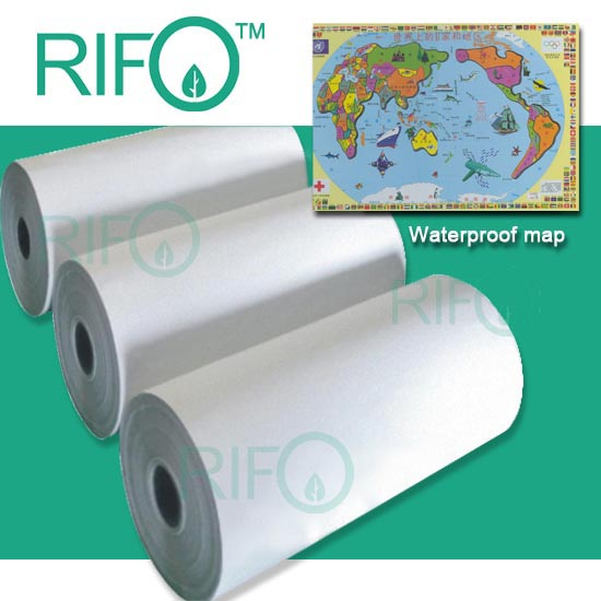 White Color Moisture Proof PP Synthetic Paper with RoHS MSDS