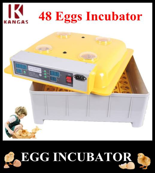 Incubators for Hatching Eggs Poultry Equipments and Incubators Machine