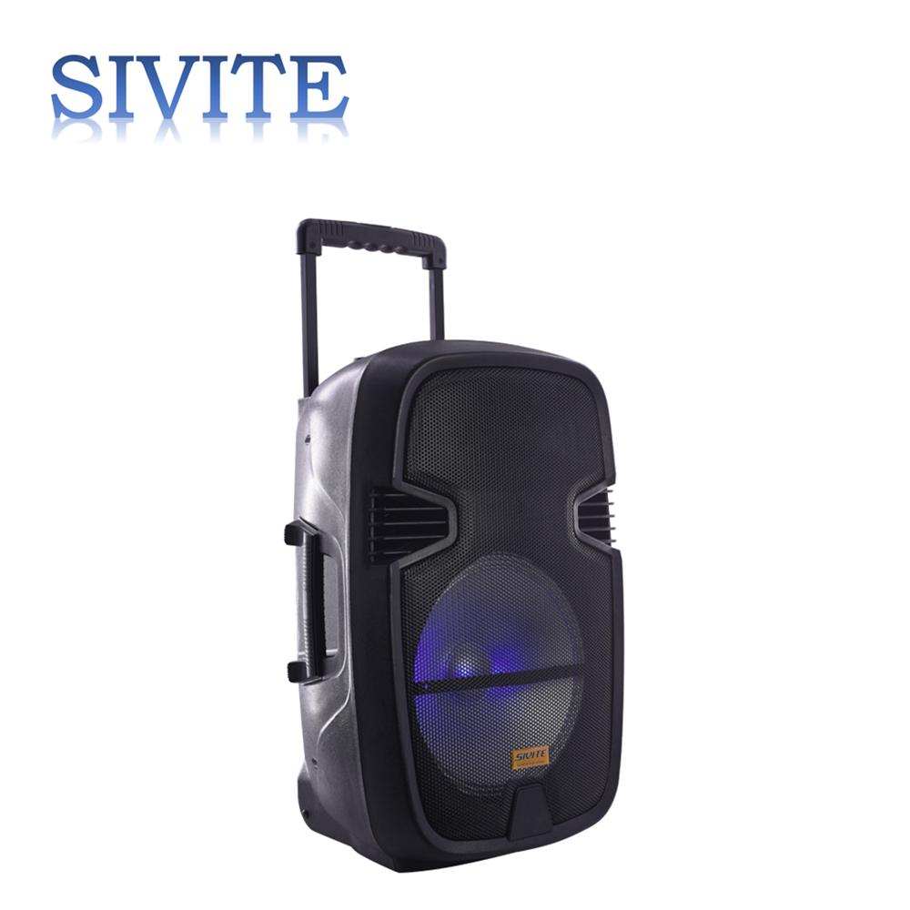 SIVITE CT-12E bt amplifier wireless microphone speaker 12 inch active speaker