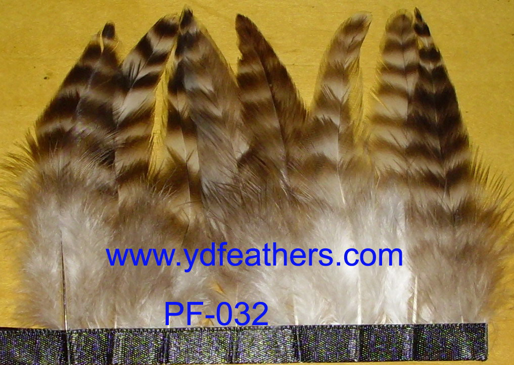 Feather Trimming