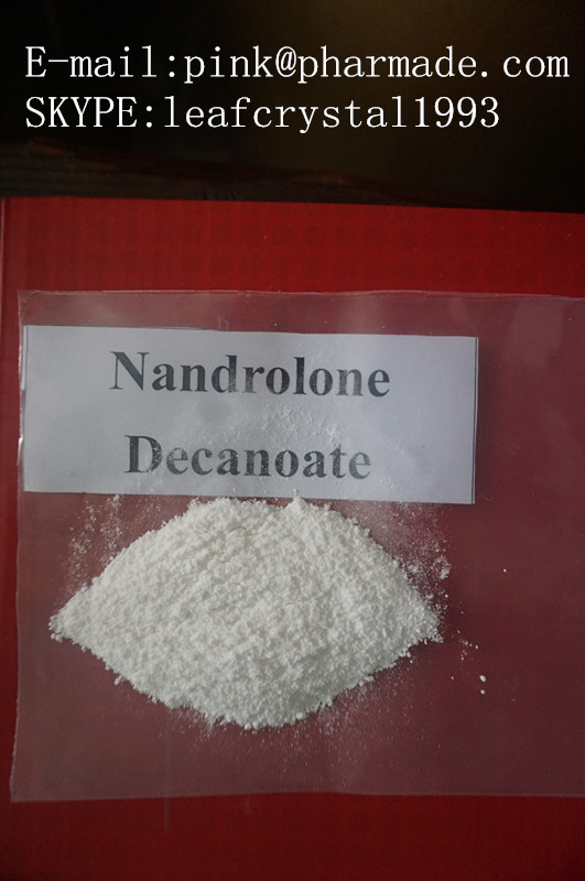 USP28 Nandrolone Muscle Growth Steroids Powder No Side Effect Nandrolone Decanoate