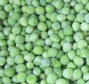 frozen green peas, IQF green peas