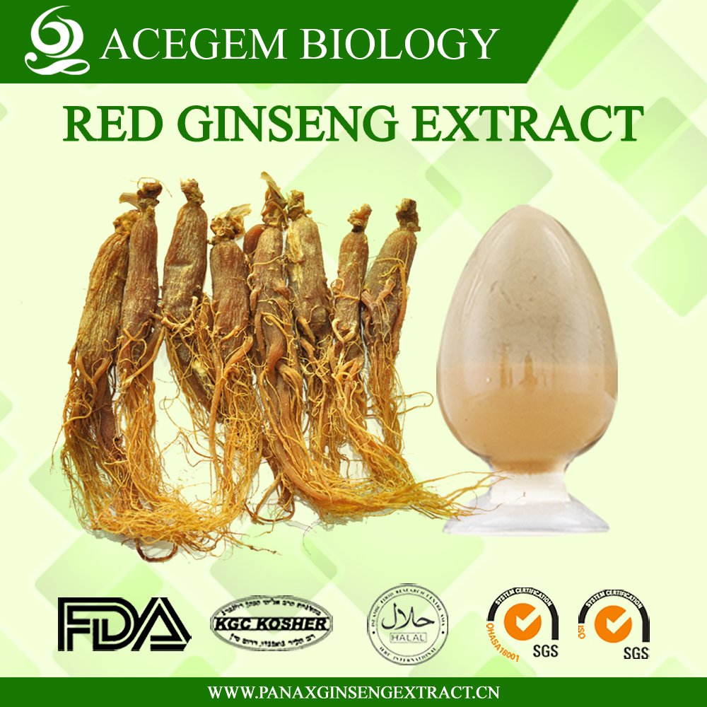 EC Standard Red Korean Ginseng Extract with 1%-20% Ginsenosides by HPLC