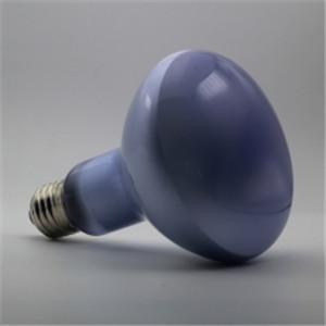 Reptile Daylight Neodymium Basking Lamp R30 / R95 150W