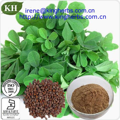 Fenugreek seed extract,4-hydroxyisoleucine CAS:84625-40-1