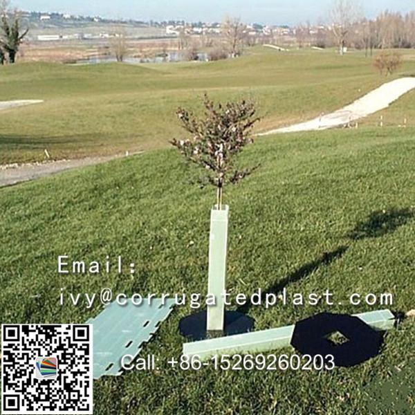 Corflute tree guards,plastic tree guard,vine guard