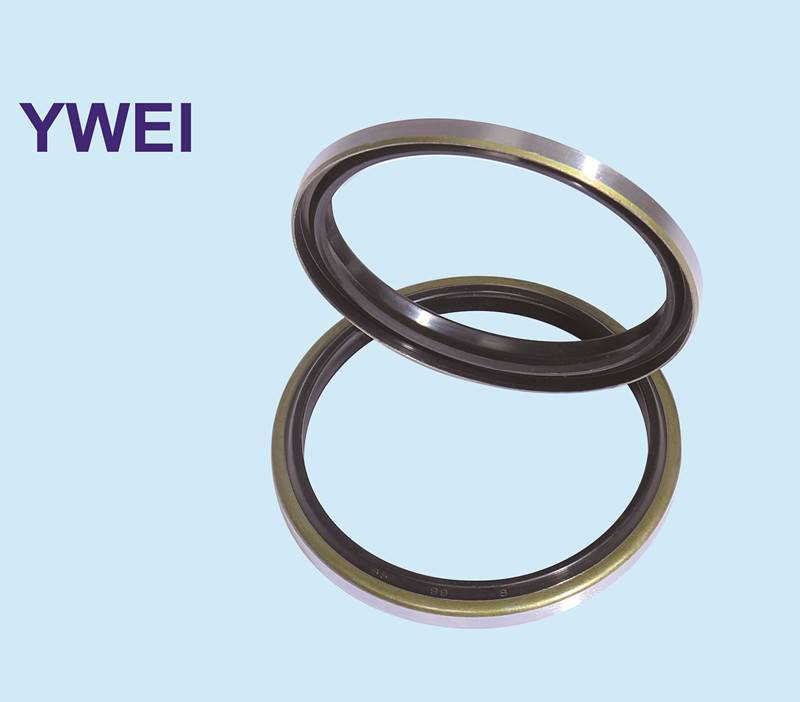 NBR PU FKM Type Dustproof seal DKB Oil Seal China supplier