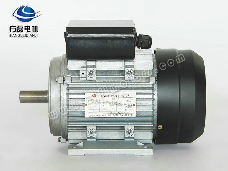 Ml Two Capacitor single phase AC motor