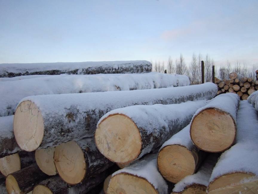 Aspen Logs