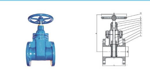 resilient seated gate valve flanged